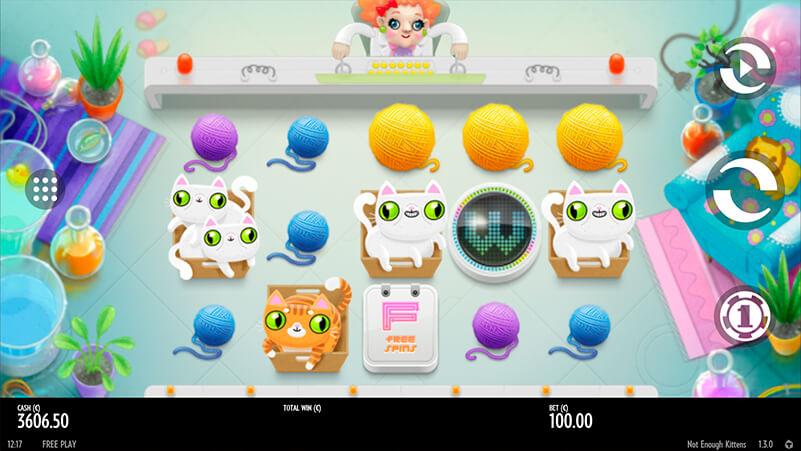 Изображение игрового автомата Not Enough Kittens 1