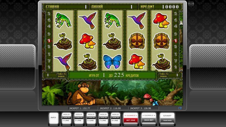 Изображение игрового автомата Crazy Monkey 2 2